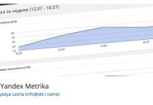 DL Yandex Metrika, wordpress, плагин, wp,